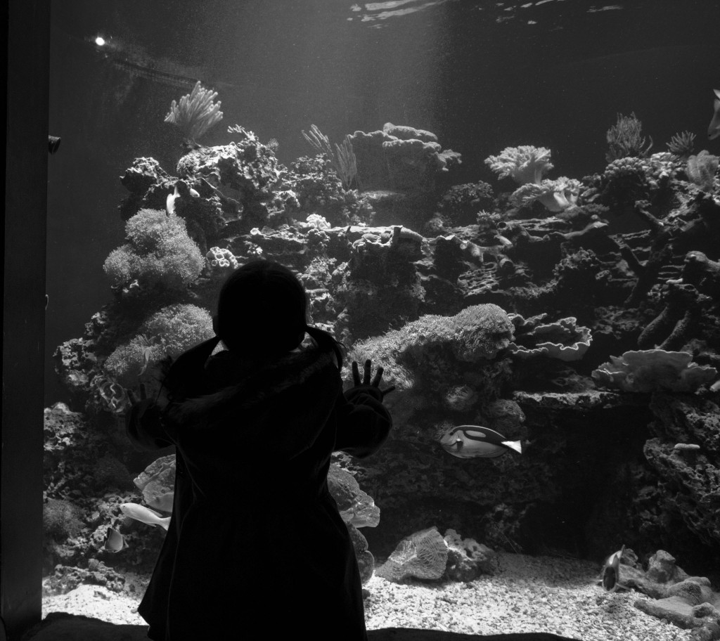 Loving on her fishy friends