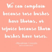 We can complain because rsoe bushes have thorns, or rejoice because thorn bushes have roses - Abraham Lincoln